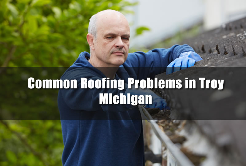 Common Roofing Problems in Troy Michigan
